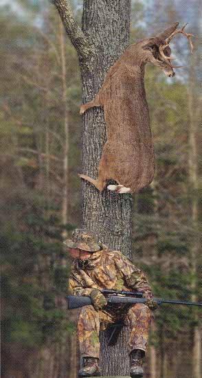 Funny Deer Hunting